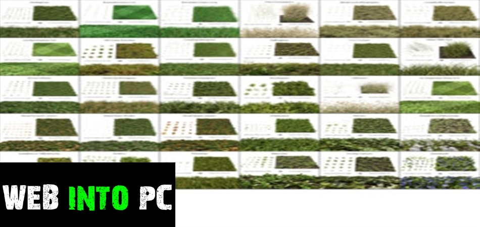The Grass Essentials Addon for Blender-get into pc