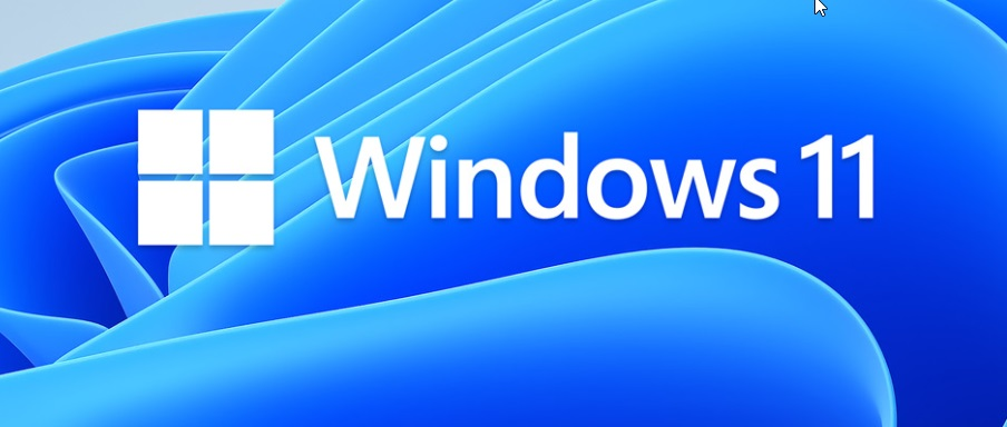 Direct links to Download Windows 11 iso